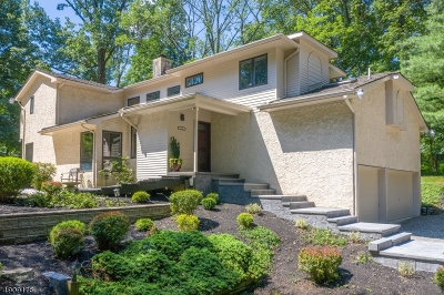 Raritan Twp. Single Family Home For Sale: 123 Cherryville Hollow Road