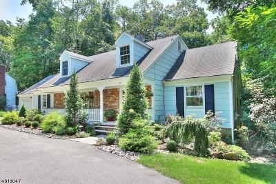 Montville Twp. Single Family Home For Sale: 22 Diann Dr