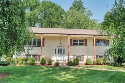 Single Family Home For Sale: 134 Whippany Rd
