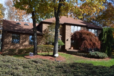 Wayne Twp. Single Family Home For Sale: 56 Ivy Pl