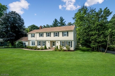 Bernards Twp. Single Family Home For Sale: 12 Frederick Ct
