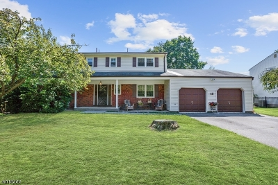 East Brunswick Twp. Single Family Home For Sale: 15 Francis Rd