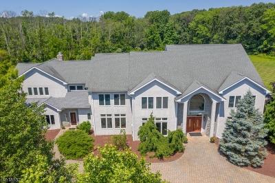 Franklin Twp. Single Family Home For Sale: 19 Laurelton Trl