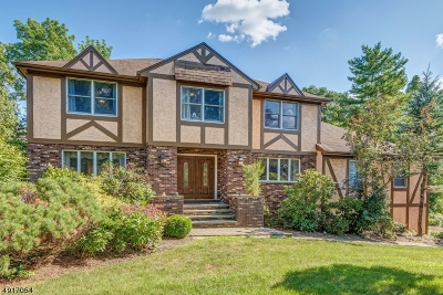 Montville Twp. Single Family Home For Sale: 3 Tomalyn Hill Rd