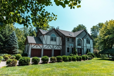 Sparta Twp. Single Family Home For Sale: 608 W Shore Trl