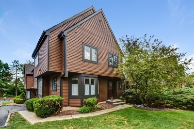 Bernards Twp. Condo/Townhouse For Sale: 31 Valley View Dr