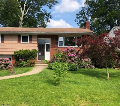 Parsippany Single Family Home For Sale: 46 Mayetta Rd