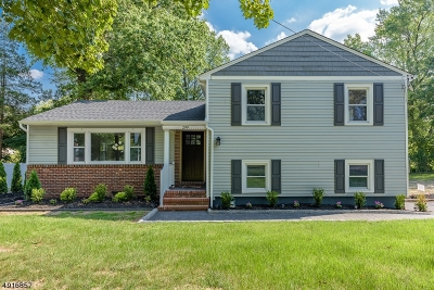 Westfield Town Single Family Home For Sale: 299 Springfield Ave