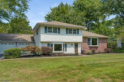 Montville Twp. Single Family Home For Sale: 28 Walnut Dr