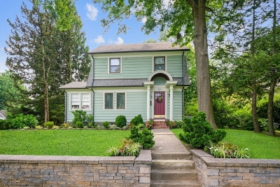 Westfield Town Single Family Home For Sale: 264 Hazel Ave
