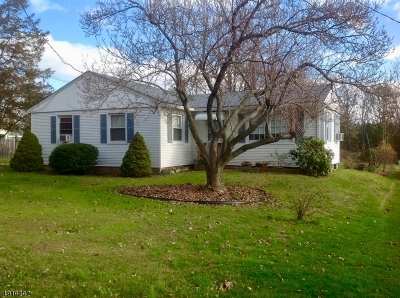 Tewksbury Twp. Single Family Home For Sale: 134 Oldwick Rd