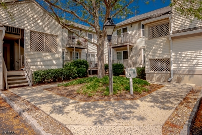 Bernards Twp. Condo/Townhouse For Sale: 48 Commonwealth Dr