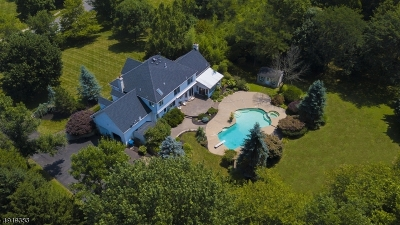 Montgomery Twp. Single Family Home For Sale: 63 Roanoke Rd