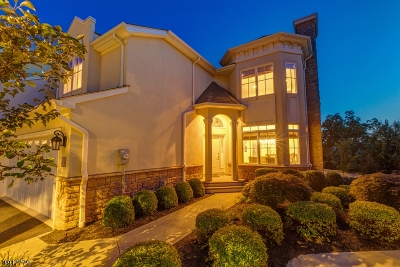 West Orange Twp. Condo/Townhouse For Sale: 14 Metzger Dr