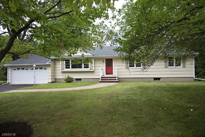Morris Twp. Single Family Home For Sale: 48 Frederick Pl