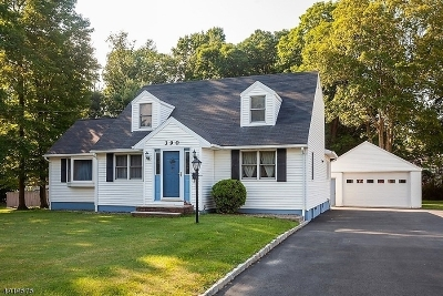 Randolph Twp. Single Family Home For Sale: 390 Dover-Chester Rd