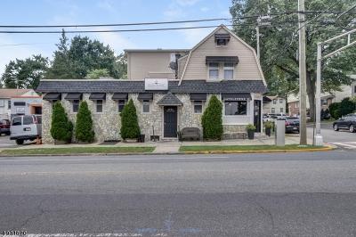 Kenilworth Boro Commercial For Sale: 303 So Michigan Ave