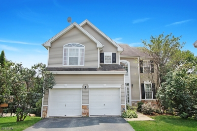 Mount Olive Twp. Single Family Home For Sale: 53 Winding Hill Dr