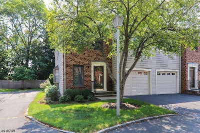 Summit City NJ Condo/Townhouse For Sale: $739,000