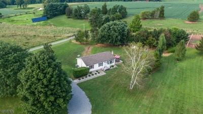 Alexandria Twp. Single Family Home For Sale: 30 Gallmeier Rd