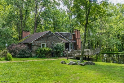 Mendham Boro NJ Single Family Home For Sale: $599,000