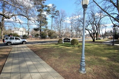 Summit City NJ Condo/Townhouse For Sale: $349,000