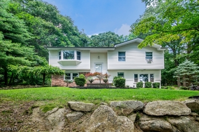 Mount Olive Twp. Single Family Home For Sale: 6 Budd Lake Heights Rd