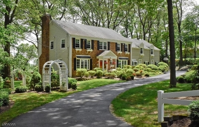 Parsippany Single Family Home For Sale: 28 Long Ridge Rd
