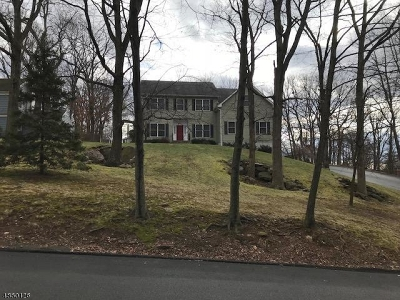 Boonton Town Single Family Home For Sale: 301 Hillside Ave