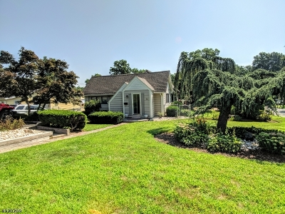 Parsippany-Troy Hills Twp. Single Family Home For Sale: 46 Hoffman Ave