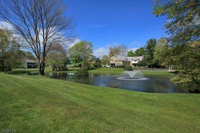 Harding Twp. NJ Single Family Home For Sale: $3,700,000