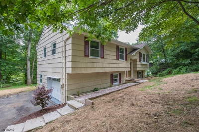 Boonton Twp. Single Family Home For Sale: 541 Rockaway Valley Rd