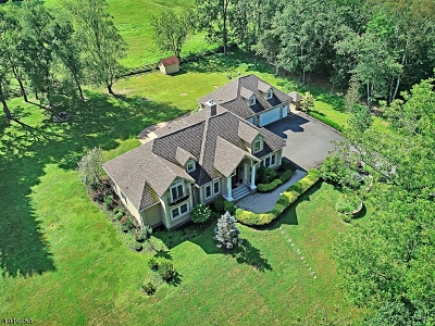 Readington Twp. Single Family Home For Sale: 128 Cole Rd