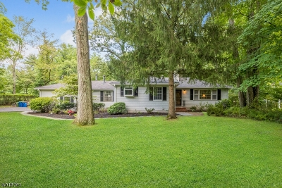 Montgomery Twp. Single Family Home For Sale: 929 Cherry Hill Rd