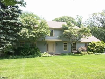 Denville Twp. Single Family Home For Sale: 32 Copeland Rd