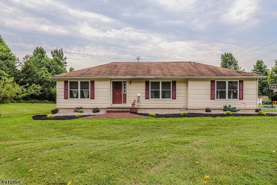 Holland Twp. Single Family Home For Sale: 305 Church Rd