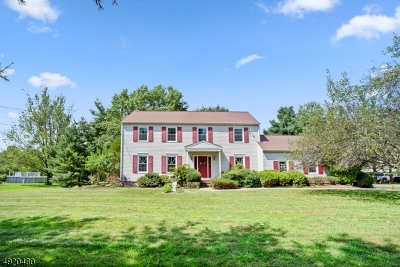Montgomery Twp. Single Family Home For Sale: 310 Sunset Rd