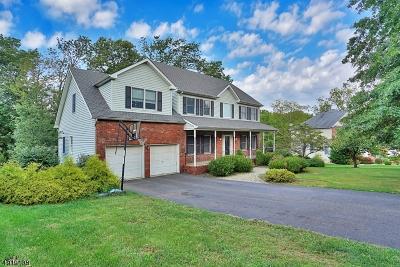 Branchburg Twp. Single Family Home For Sale: 133 Brandon Ct