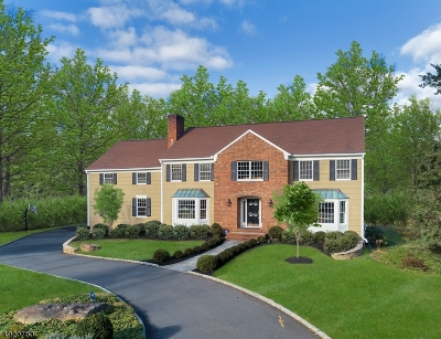Single Family Home For Sale: 19 Shadowbrook Ct