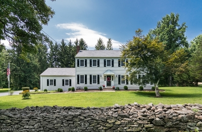 Randolph Twp. Single Family Home For Sale: 104 Pleasant Hill Rd