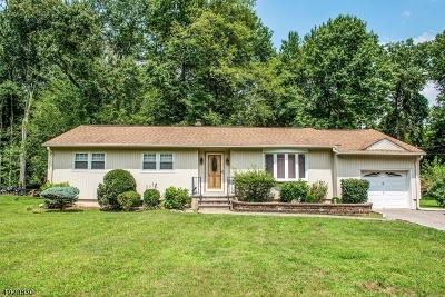 Parsippany Single Family Home For Sale: 60 Jean Ter