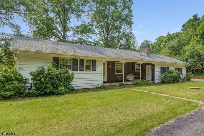 Tewksbury Twp. Single Family Home For Sale: 36 Philhower Rd
