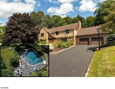 Vernon Twp. Single Family Home For Sale: 432 Route 515