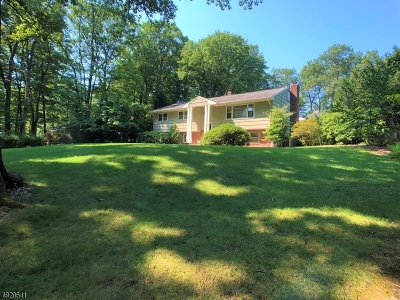 Montville Twp. Single Family Home For Sale: 230 Brook Valley Rd