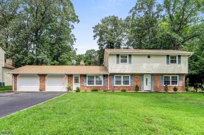 Rockaway Boro Single Family Home For Sale: 73 Woodside Ave