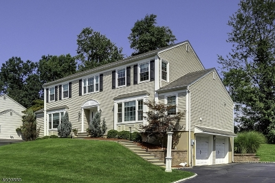 East Hanover Twp. Single Family Home For Sale: 9 Valley View Dr