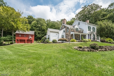 Chester Twp. NJ Single Family Home For Sale: $995,000