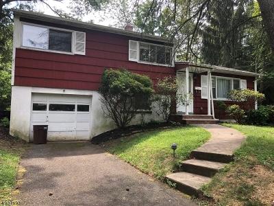 Fanwood Boro Single Family Home For Sale: 16 Rainier Rd