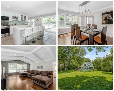 Maplewood Twp. Single Family Home For Sale: 374 Elmwood Ave