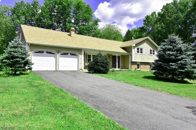 Montville Twp. Single Family Home For Sale: 2 Montgomery Ave
